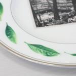 平坦でない皿にも印刷出来ます。※食品衛生法に対応済